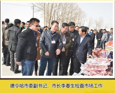 德令哈市委副书记、市长李春生检查市场工作
